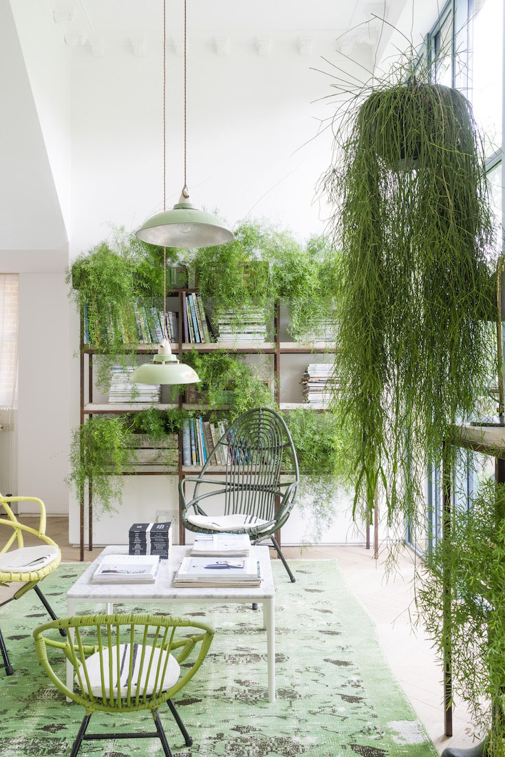 green house_9